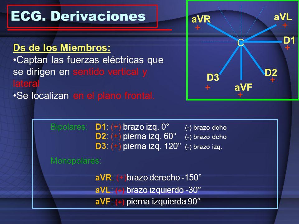 ECG. Derivaciones aVL aVR + + D1 C Ds de los Miembros: