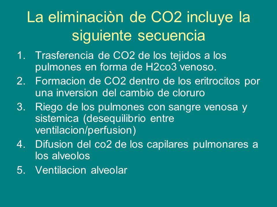 La eliminaciòn de CO2 incluye la siguiente secuencia