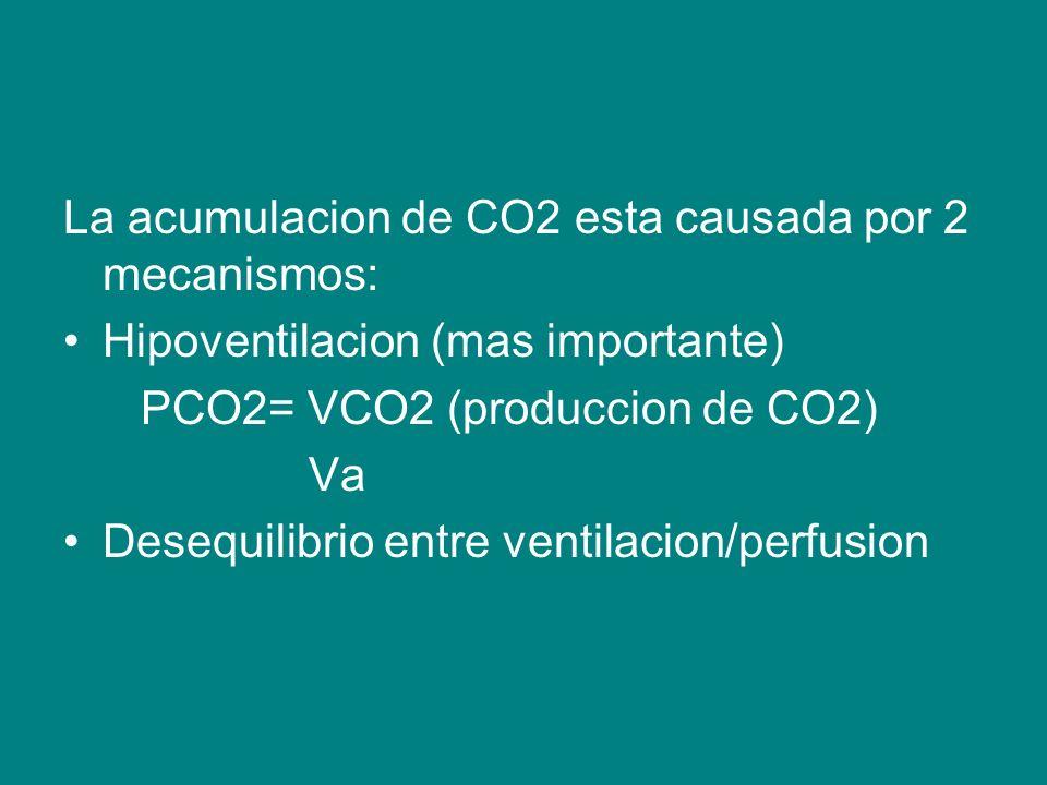 La acumulacion de CO2 esta causada por 2 mecanismos: