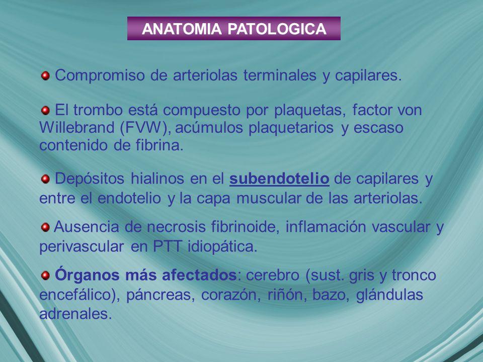Compromiso de arteriolas terminales y capilares.
