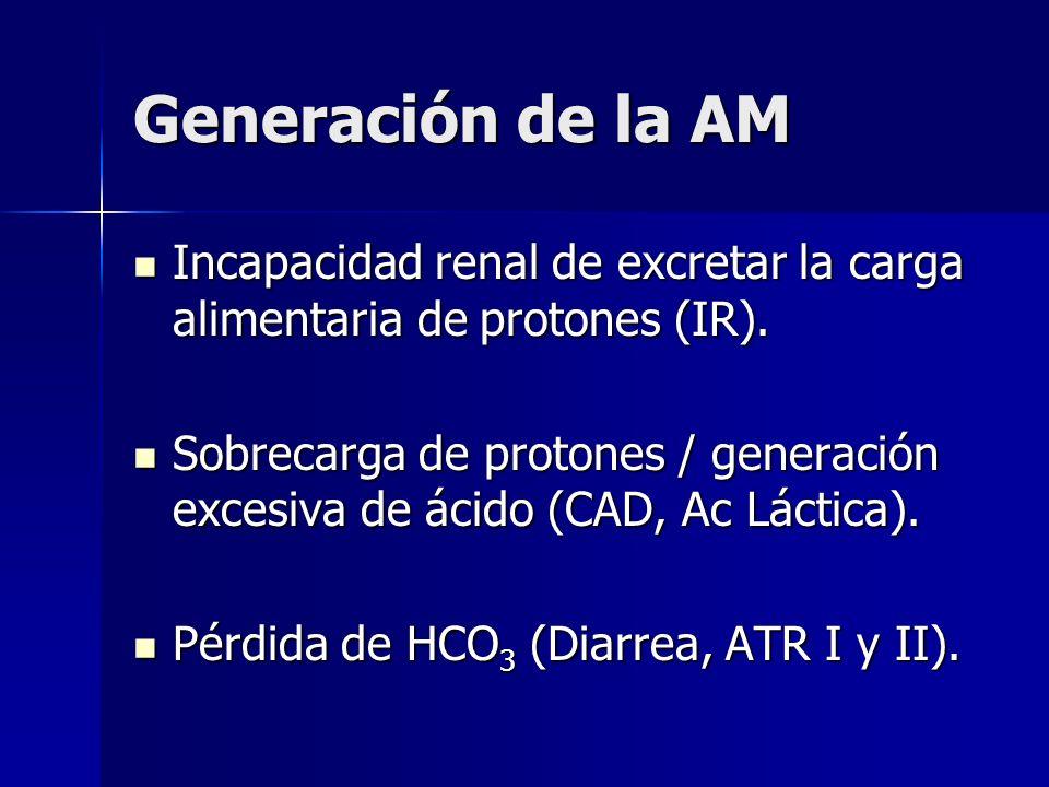 Generación de la AM Incapacidad renal de excretar la carga alimentaria de protones (IR).