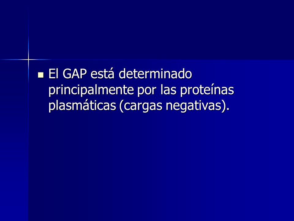 El GAP está determinado principalmente por las proteínas plasmáticas (cargas negativas).