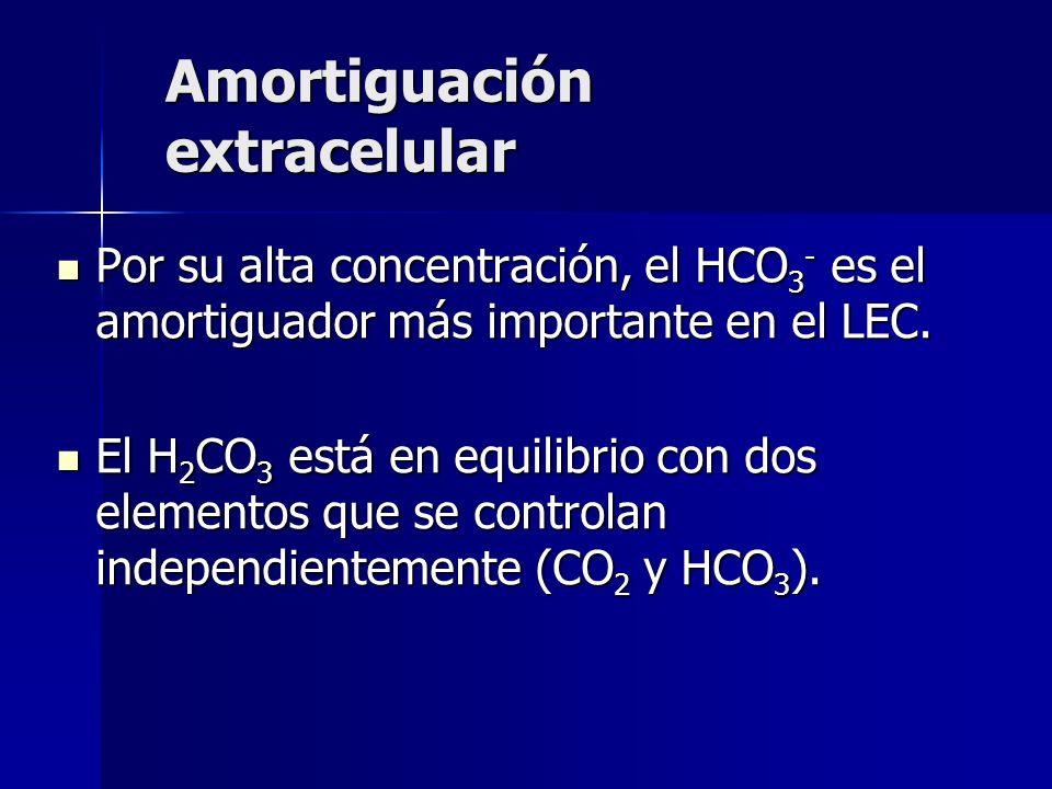 Amortiguación extracelular