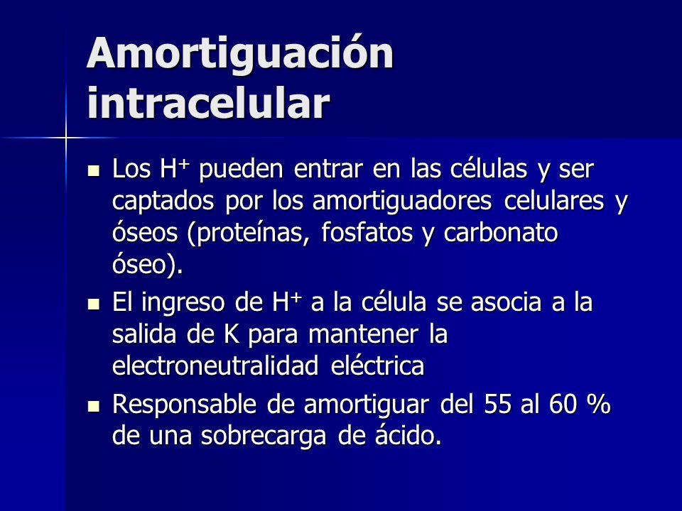 Amortiguación intracelular