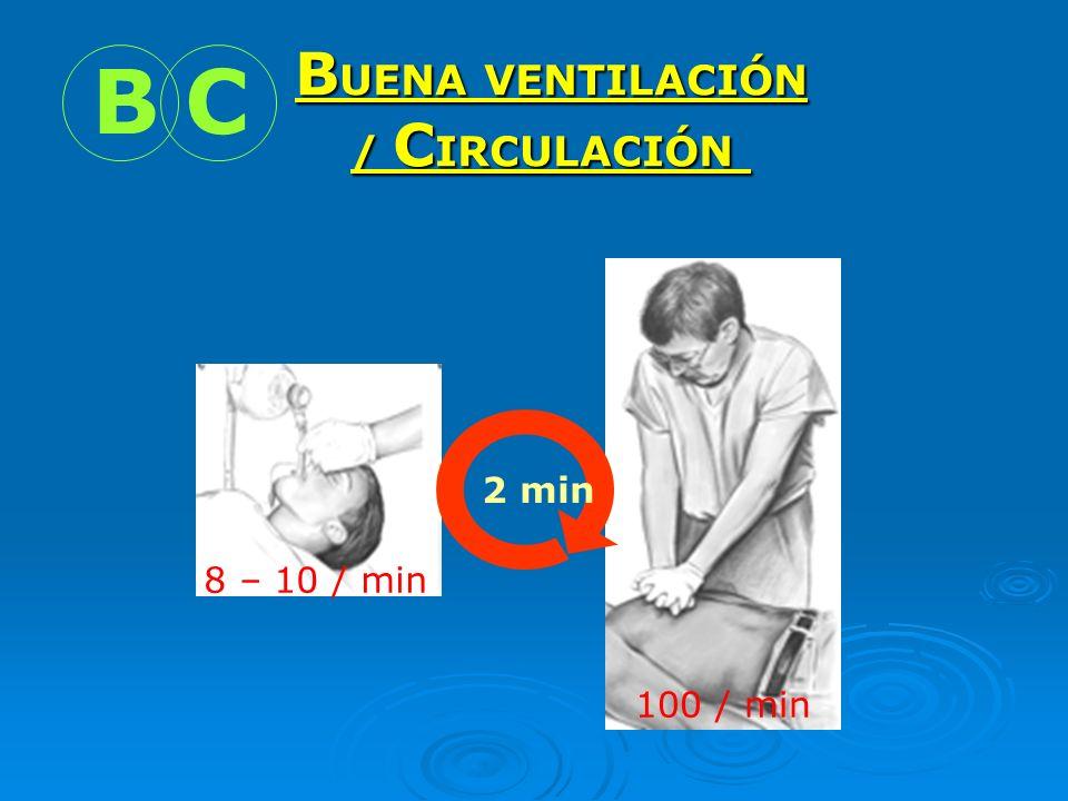 BUENA VENTILACIÓN / CIRCULACIÓN B C 2 min 8 – 10 / min 100 / min