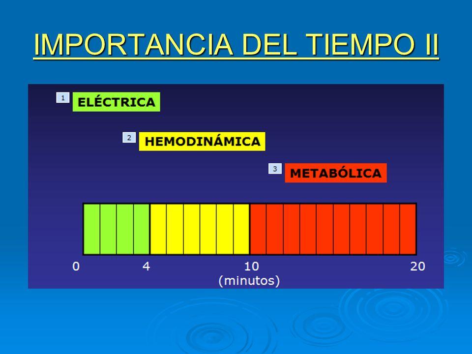 IMPORTANCIA DEL TIEMPO II