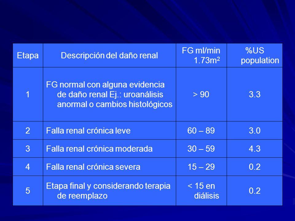 Descripción del daño renal