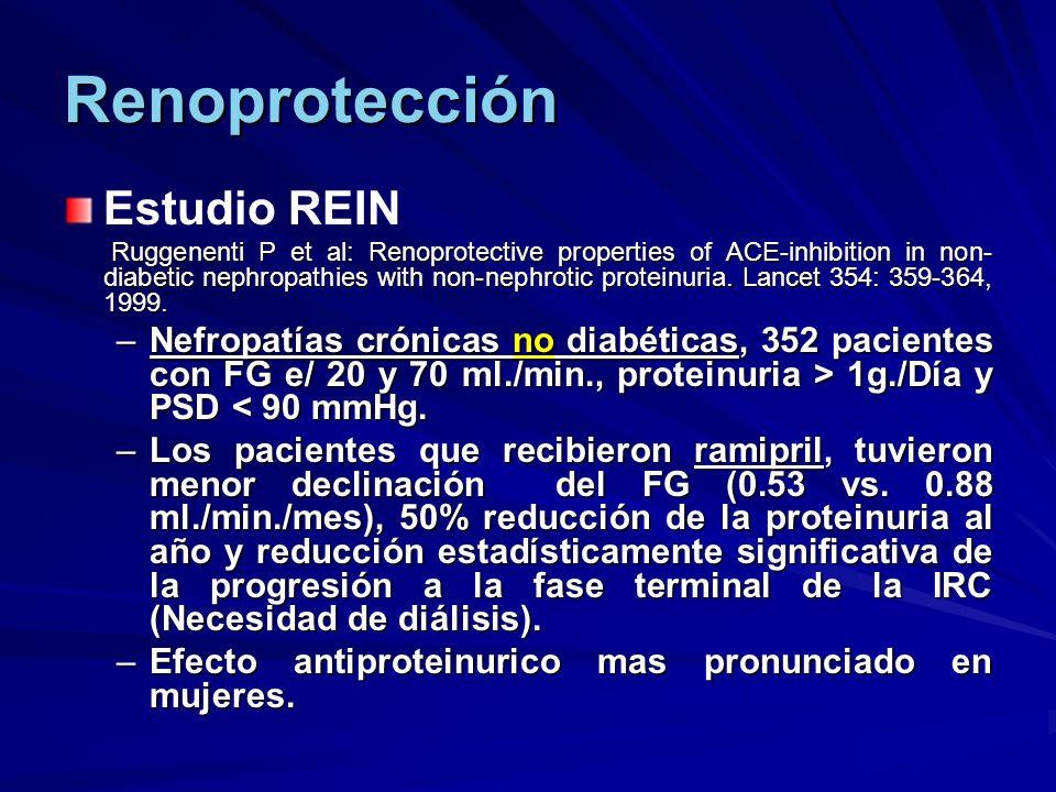 Renoprotección Estudio REIN
