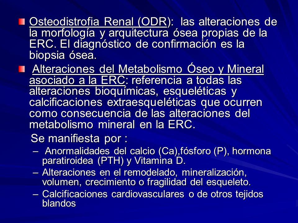 Osteodistrofia Renal (ODR): las alteraciones de la morfología y arquitectura ósea propias de la ERC. El diagnóstico de confirmación es la biopsia ósea.