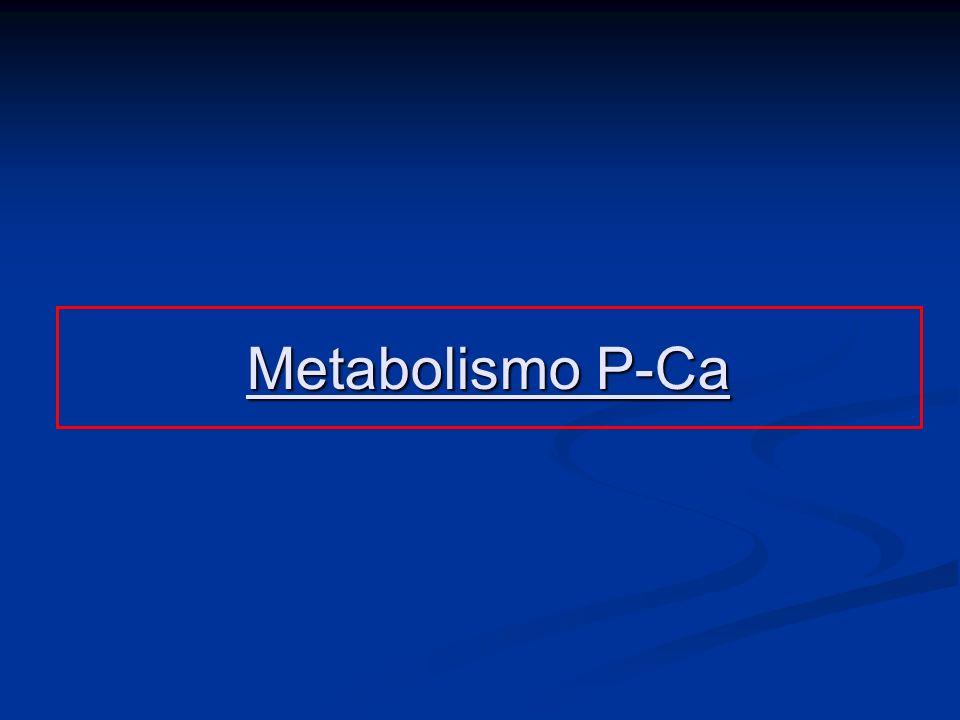 Metabolismo P-Ca