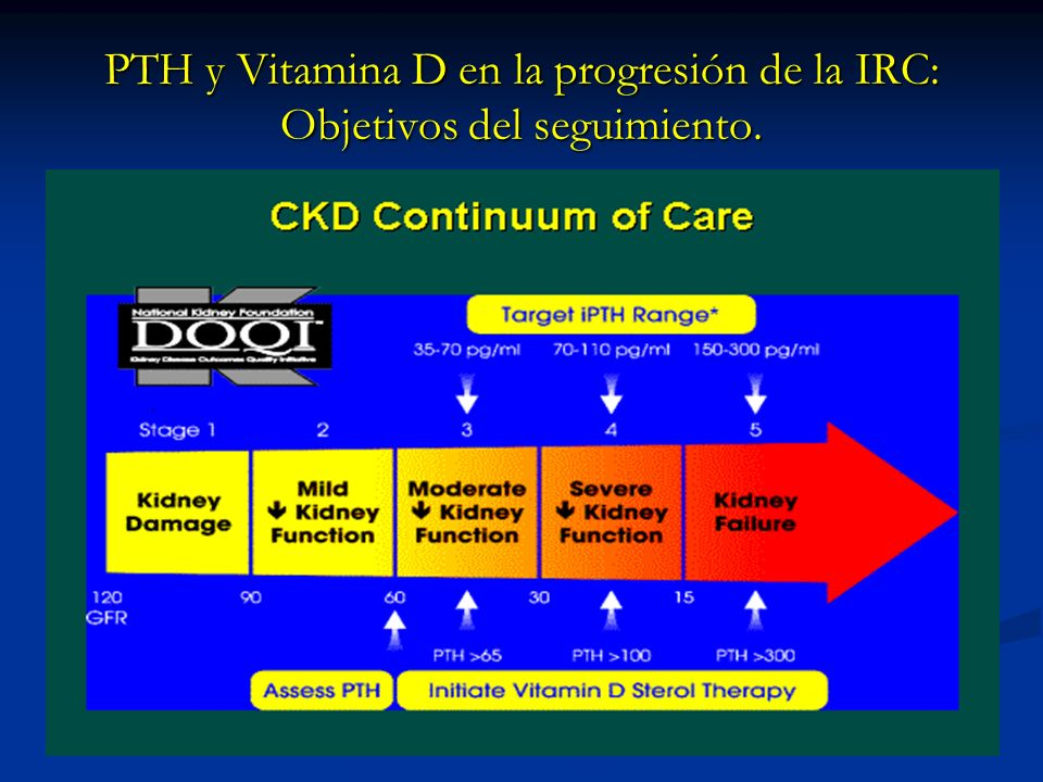 PTH y Vitamina D en la progresión de la IRC: Objetivos del seguimiento.