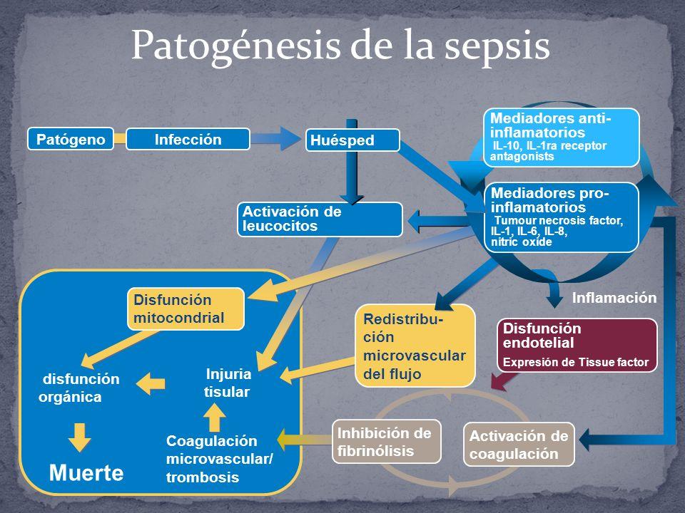 Patogénesis de la sepsis