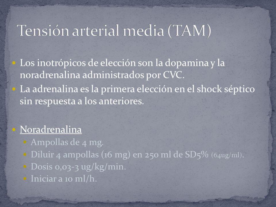 Tensión arterial media (TAM)