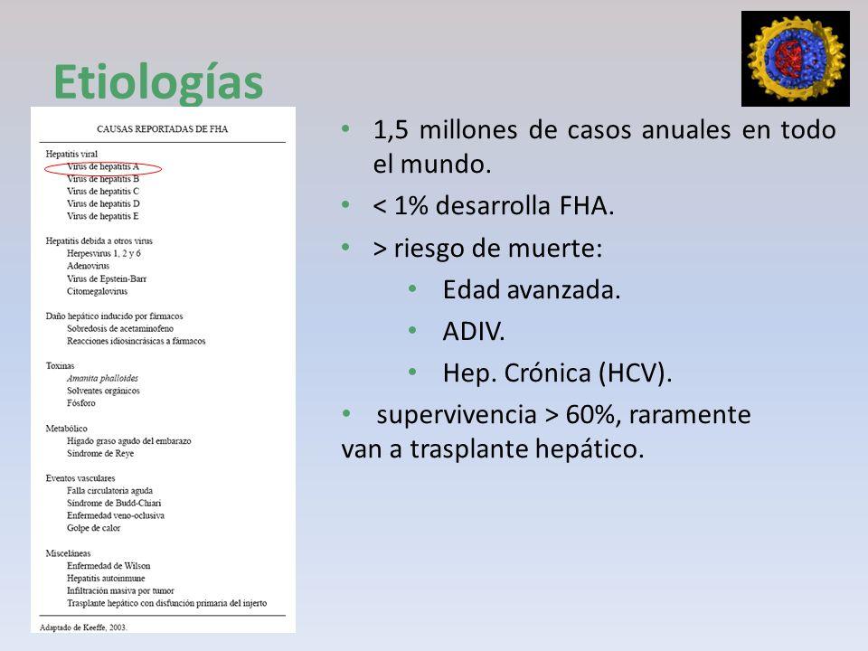 Etiologías 1,5 millones de casos anuales en todo el mundo.