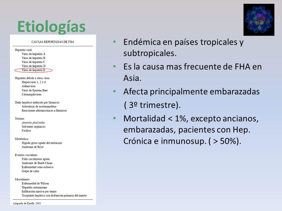 Etiologías Endémica en países tropicales y subtropicales.