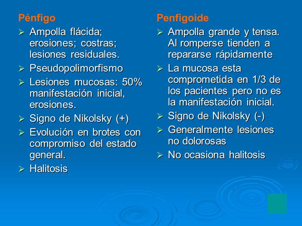 Pénfigo Ampolla flácida; erosiones; costras; lesiones residuales. Pseudopolimorfismo. Lesiones mucosas: 50% manifestación inicial, erosiones.