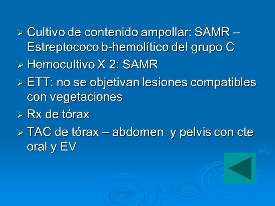 Cultivo de contenido ampollar: SAMR – Estreptococo b-hemolítico del grupo C