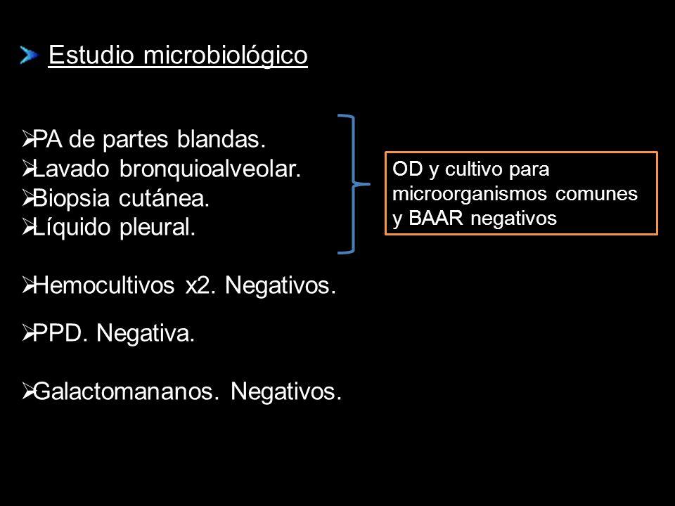 Estudio microbiológico