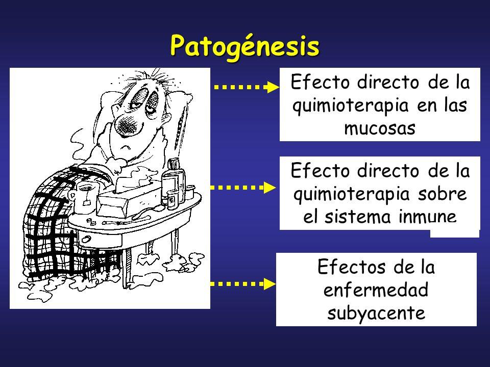 Patogénesis Efecto directo de la quimioterapia en las mucosas