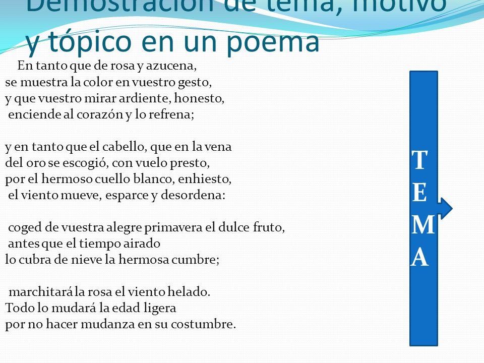 Demostración de tema, motivo y tópico en un poema