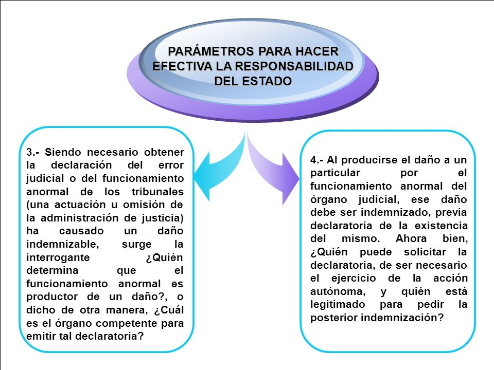 PARÁMETROS PARA HACER EFECTIVA LA RESPONSABILIDAD DEL ESTADO