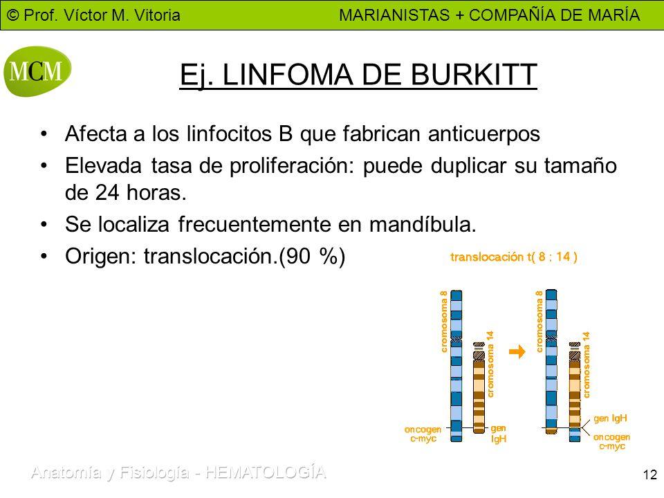 Ej. LINFOMA DE BURKITTAfecta a los linfocitos B que fabrican anticuerpos. Elevada tasa de proliferación: puede duplicar su tamaño de 24 horas.