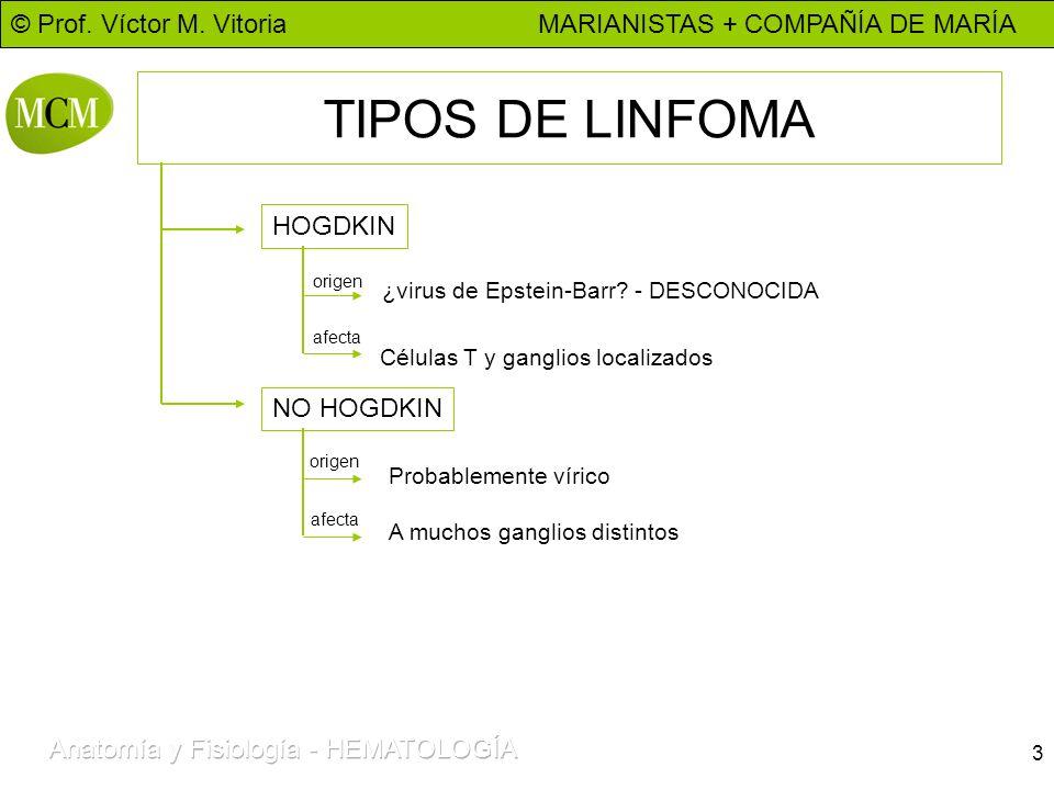 TIPOS DE LINFOMA HOGDKIN NO HOGDKIN