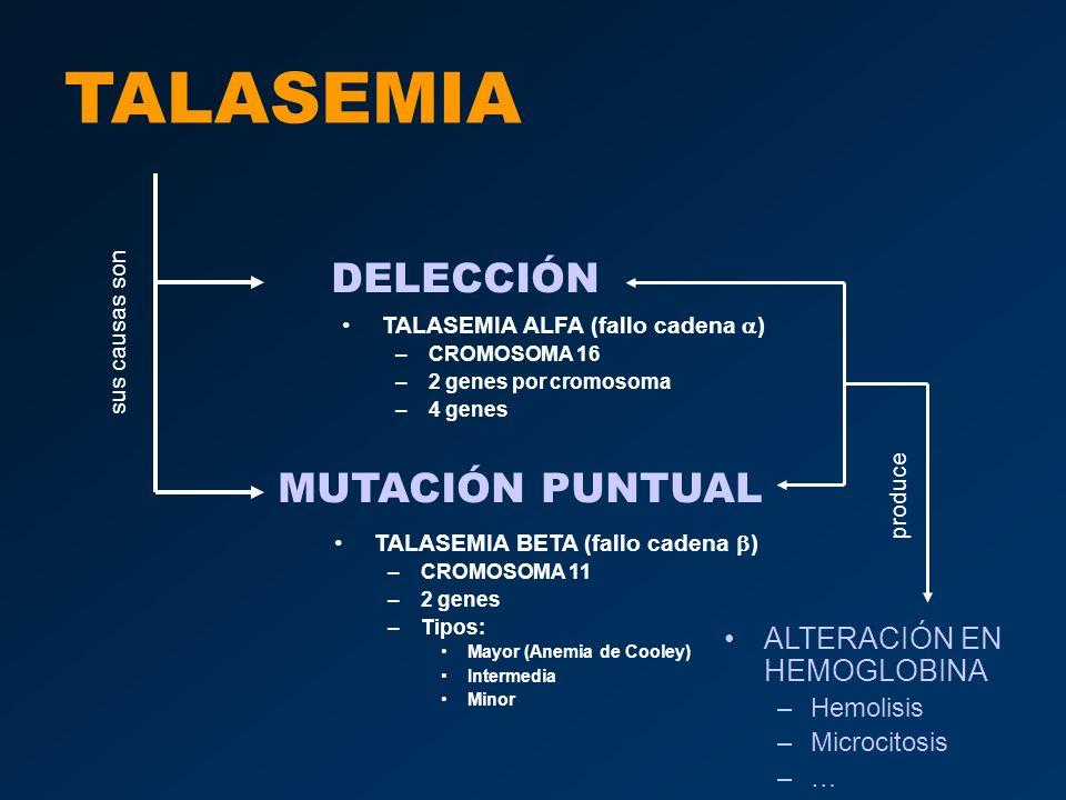TALASEMIA DELECCIÓN MUTACIÓN PUNTUAL ALTERACIÓN EN HEMOGLOBINA