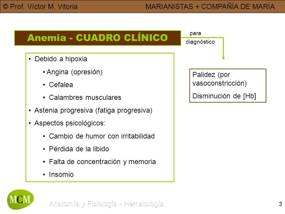 Anemia - CUADRO CLÍNICO