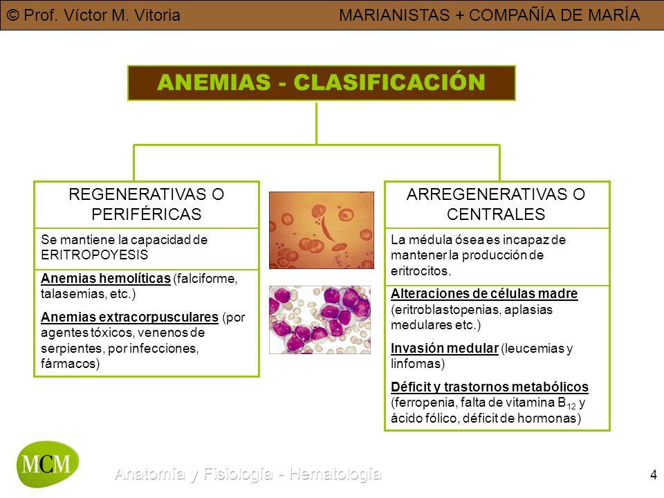 ANEMIAS - CLASIFICACIÓN