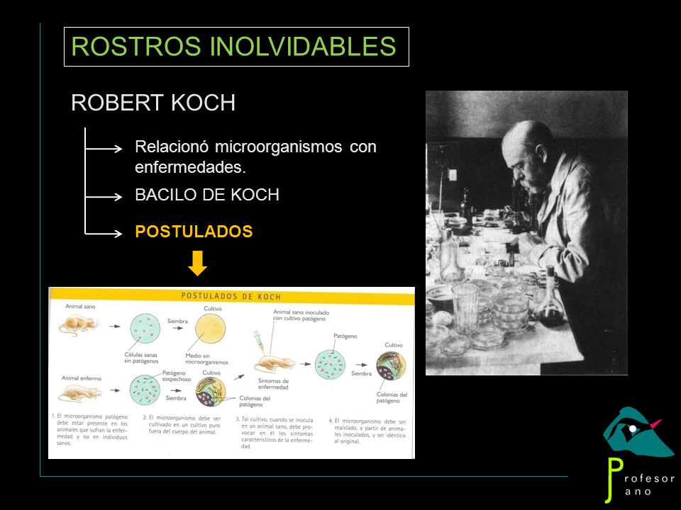 ROSTROS INOLVIDABLES ROBERT KOCH Relacionó microorganismos con