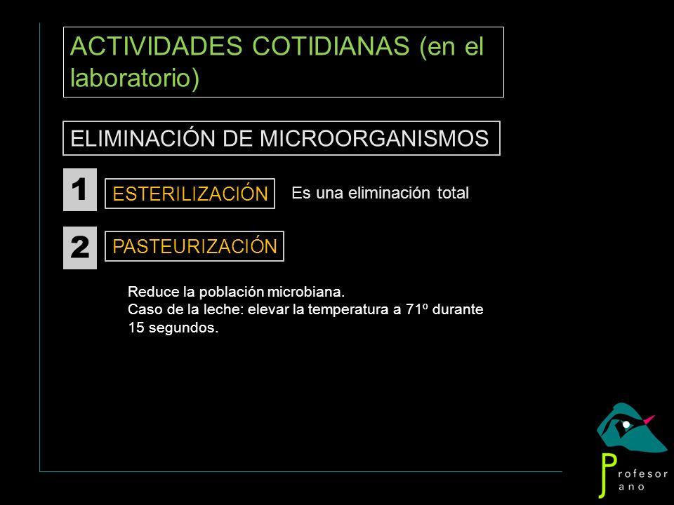 1 2 ACTIVIDADES COTIDIANAS (en el laboratorio)