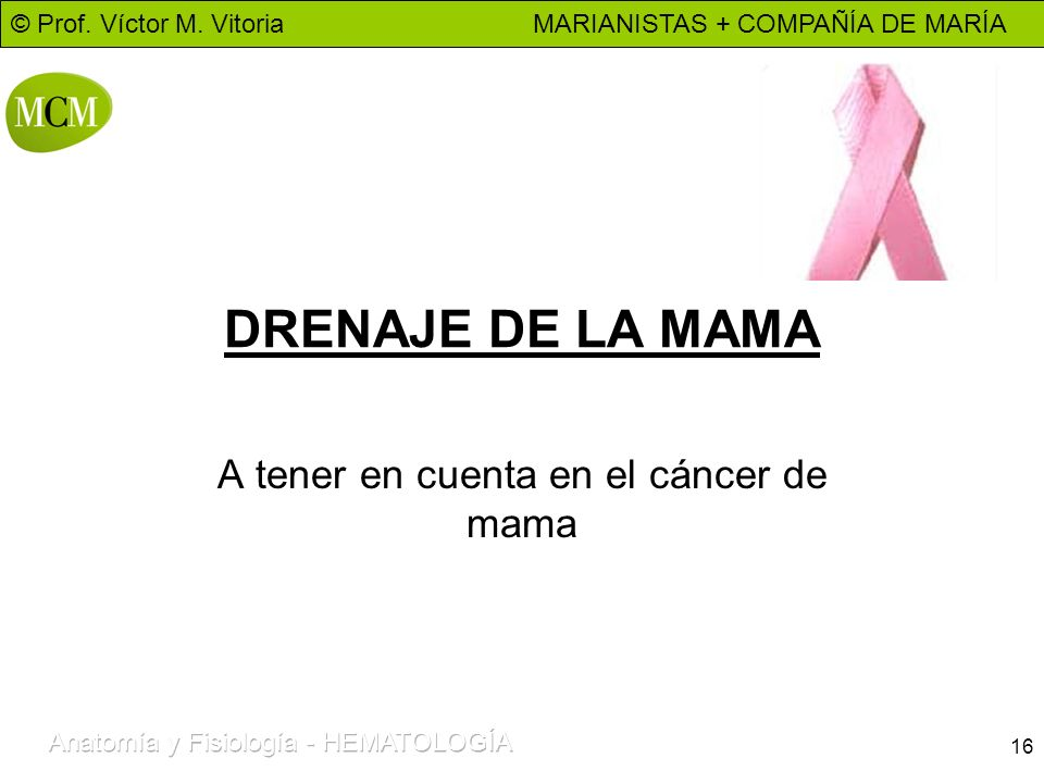 A tener en cuenta en el cáncer de mama