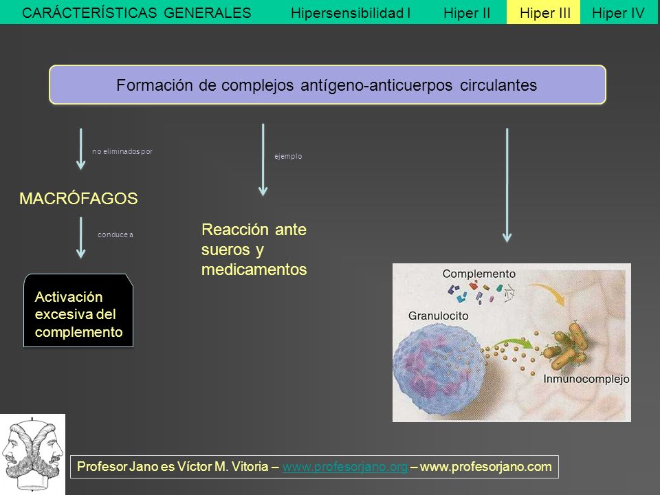 Formación de complejos antígeno-anticuerpos circulantes