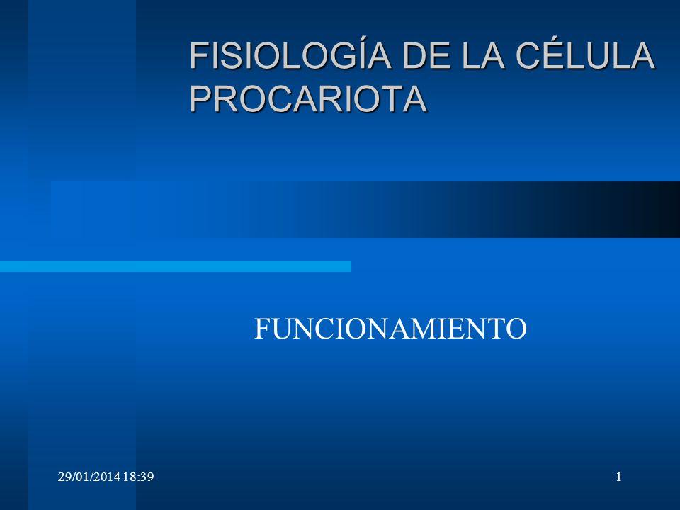 FISIOLOGÍA DE LA CÉLULA PROCARIOTA