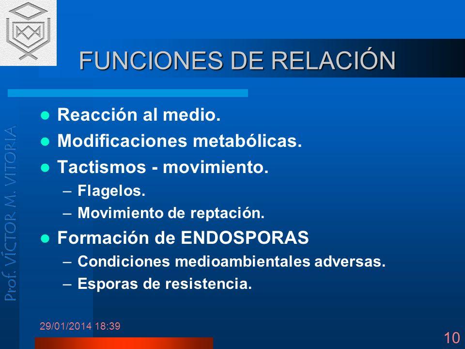 FUNCIONES DE RELACIÓN Reacción al medio. Modificaciones metabólicas.