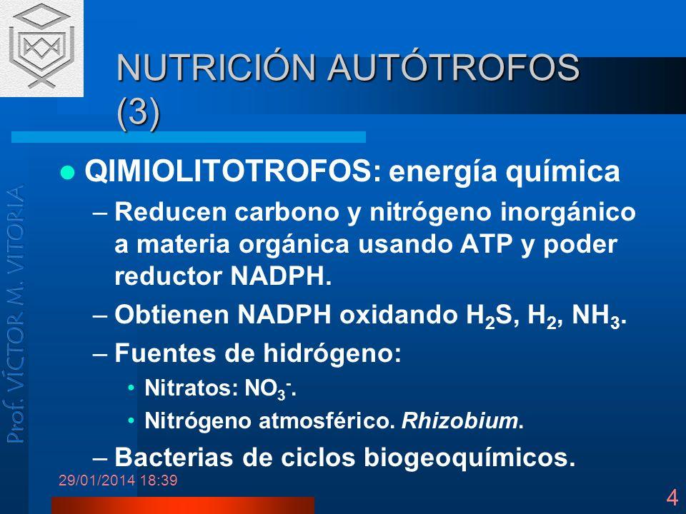 NUTRICIÓN AUTÓTROFOS (3)