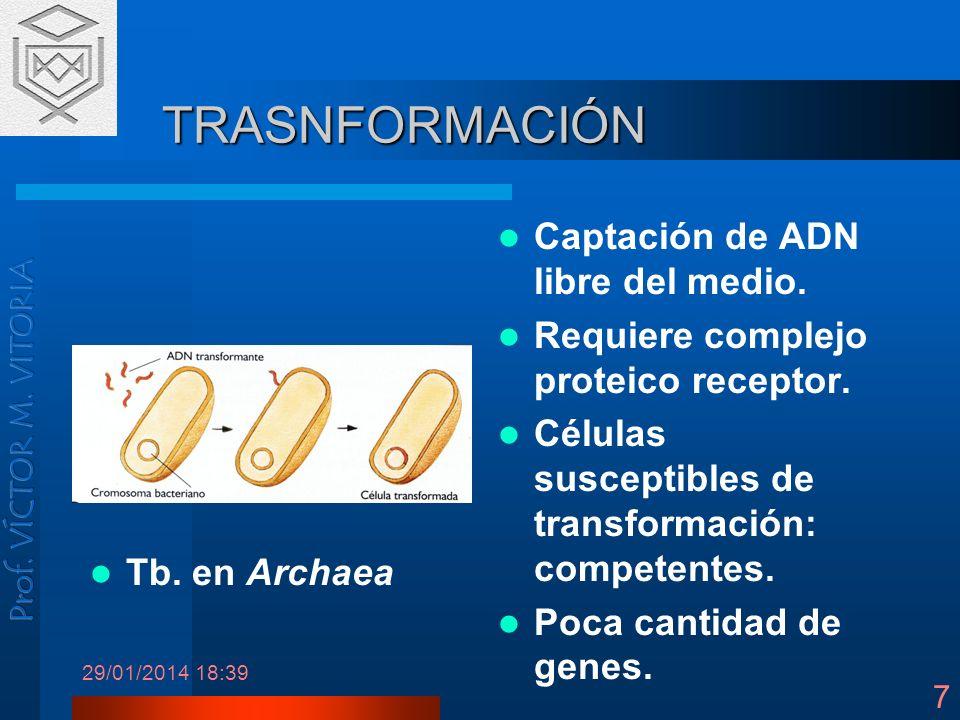 TRASNFORMACIÓN Captación de ADN libre del medio.