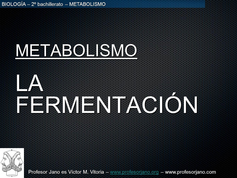 METABOLISMO LA FERMENTACIÓN