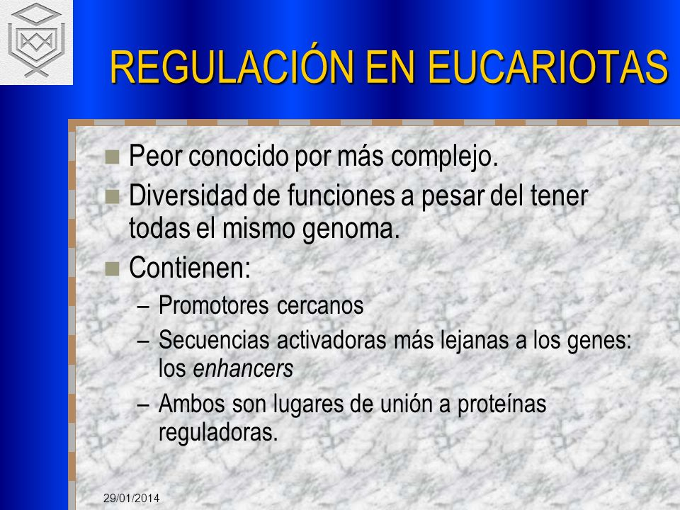REGULACIÓN EN EUCARIOTAS