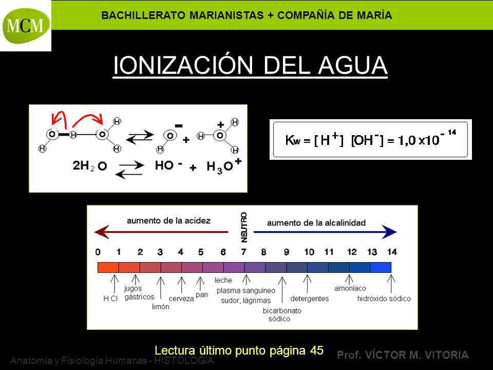 Anatomía y Fisiología Humanas - HISTOLOGÍA