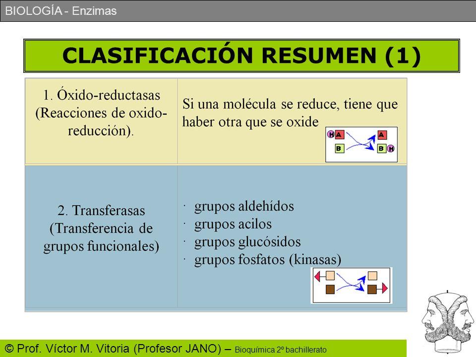 CLASIFICACIÓN RESUMEN (1)