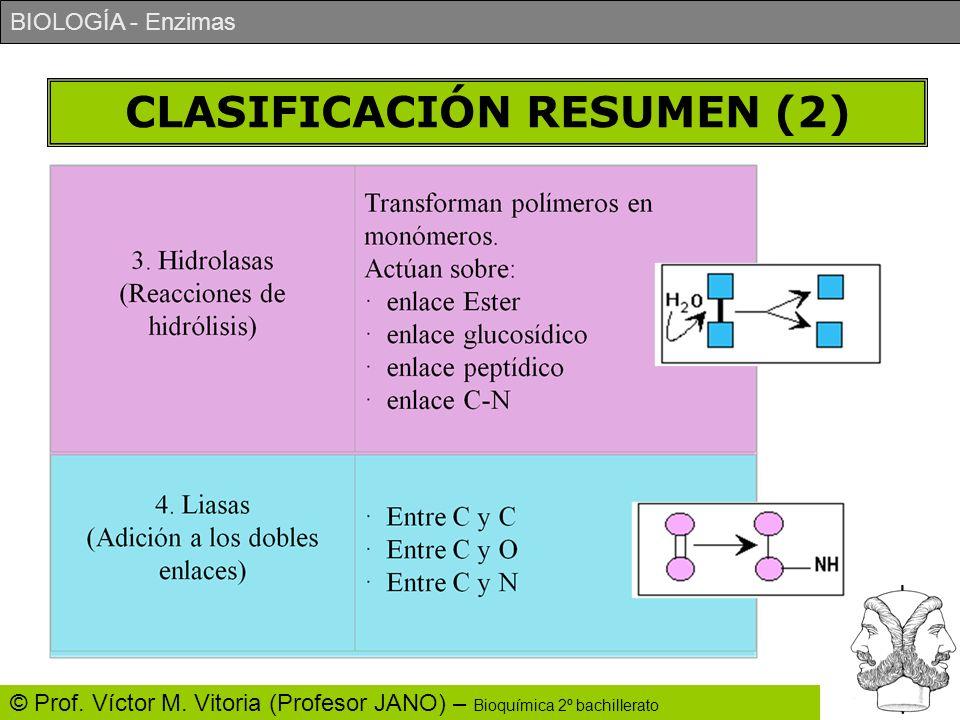 CLASIFICACIÓN RESUMEN (2)