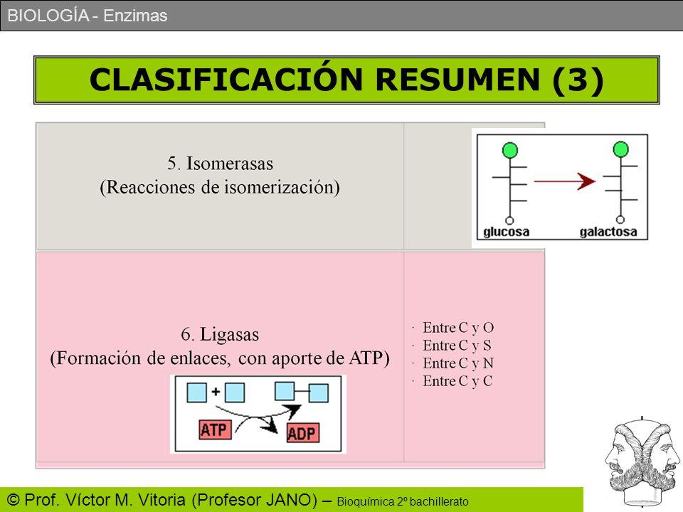 CLASIFICACIÓN RESUMEN (3)