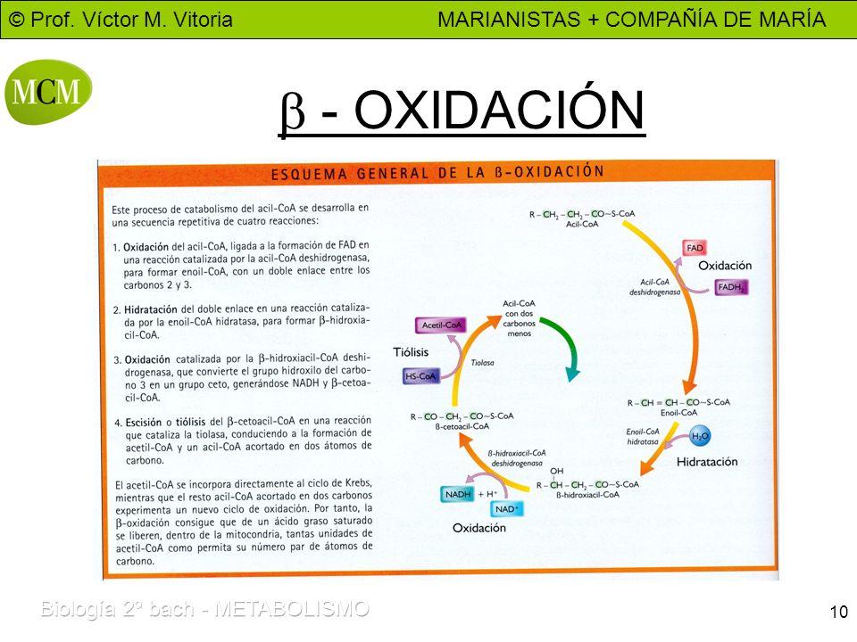b - OXIDACIÓN