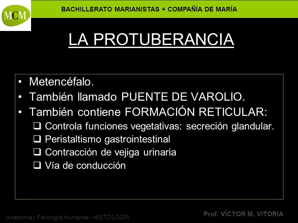VÍCTOR M. VITORIA es PROFESOR JANO