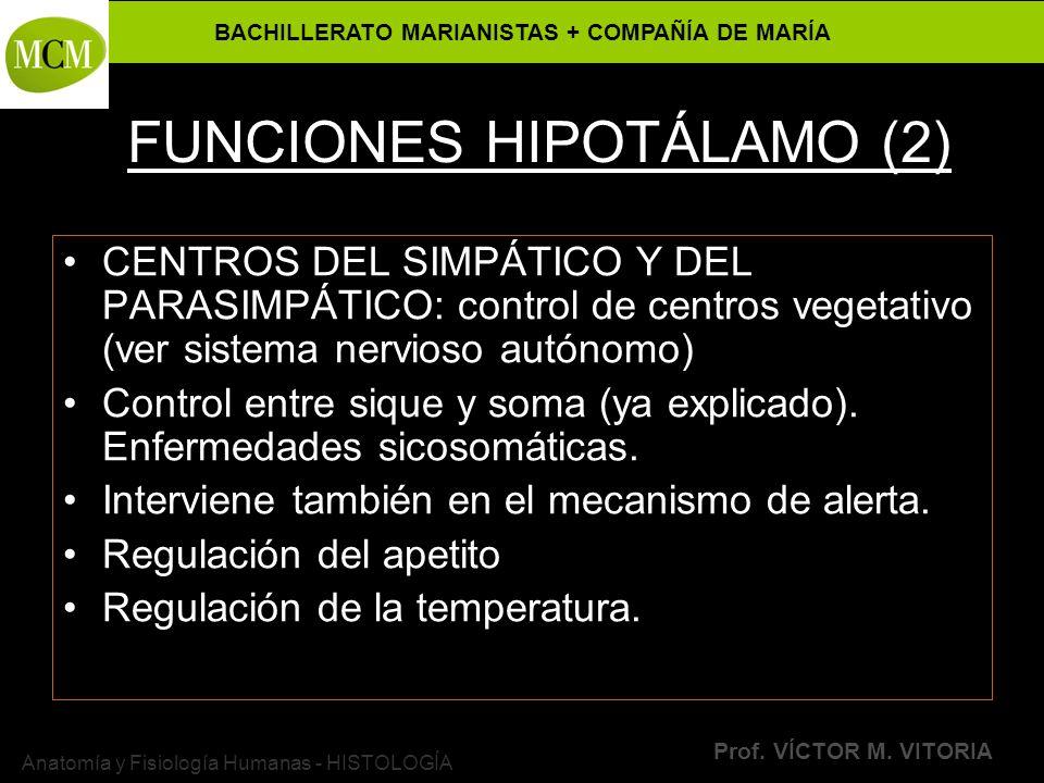 FUNCIONES HIPOTÁLAMO (2)