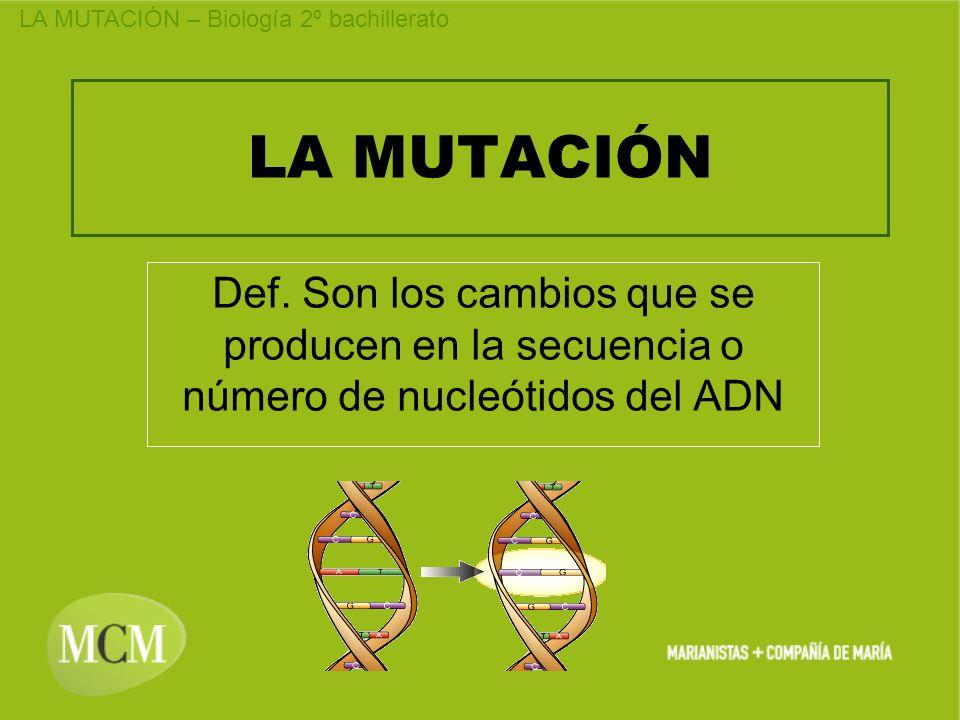 LA MUTACIÓN Def. Son los cambios que se producen en la secuencia o número de nucleótidos del ADN