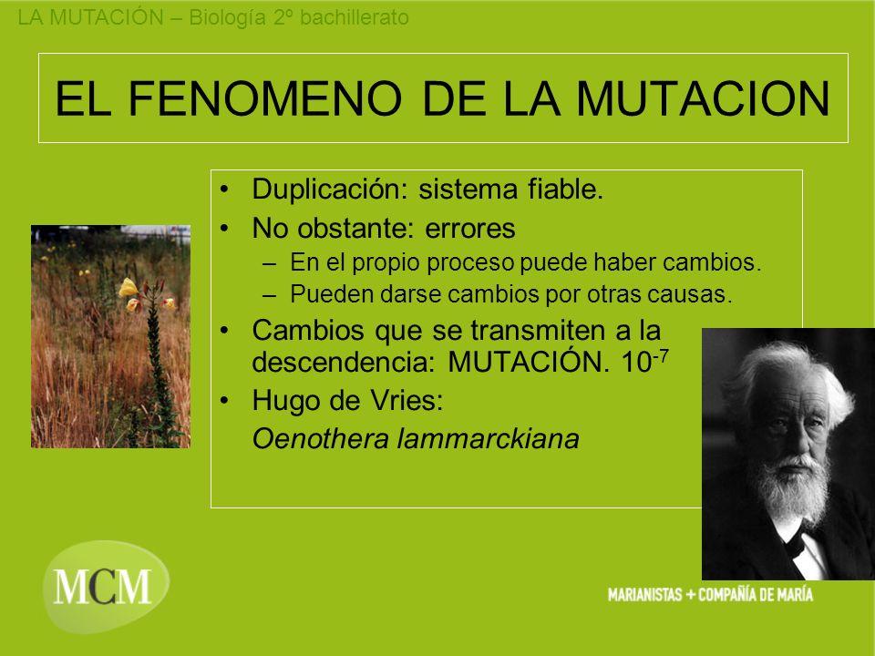 EL FENOMENO DE LA MUTACION