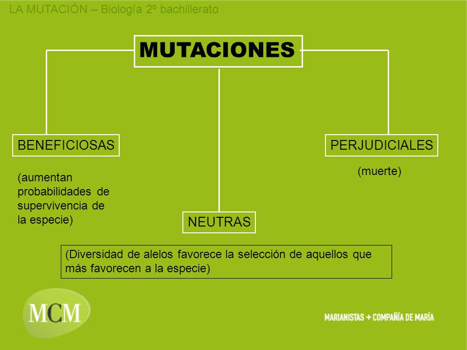 MUTACIONES BENEFICIOSAS PERJUDICIALES NEUTRAS (muerte)